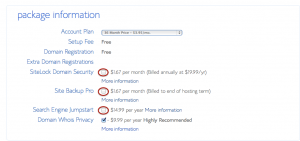 Blog Hosting Plan Options (You Don't Need Any Of These Except Domain Privacy If You Want Your Info Private)