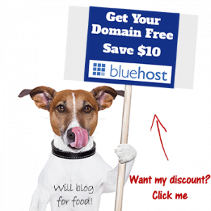 bluehost-free-domain