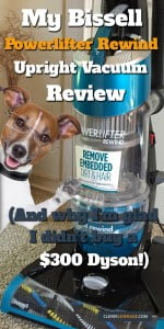 Bissell Powerlifter Rewind Review Vacuum Picture With Dog