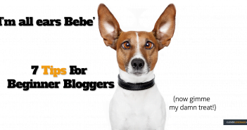 Picture of a dog listening to the 7 tips for beginner bloggers