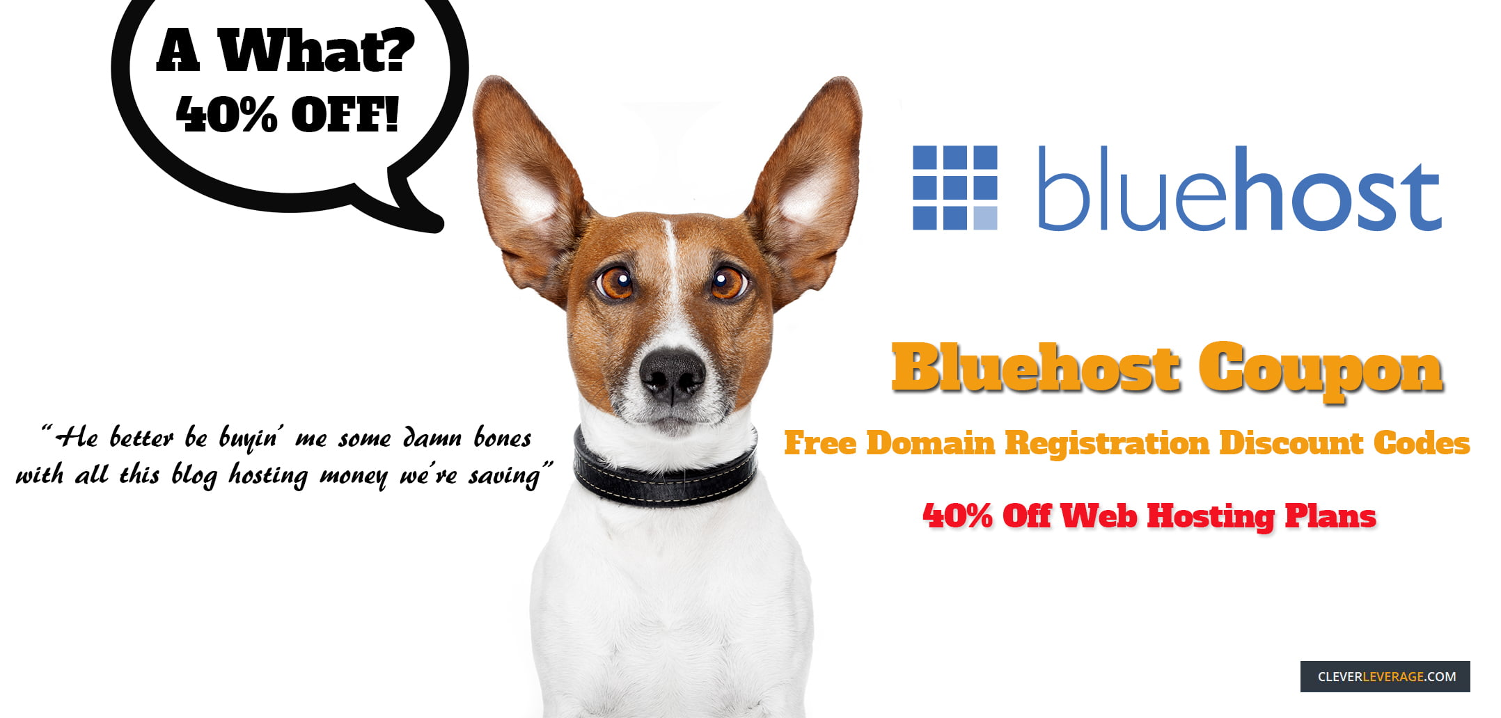 Bluehost Coupon Image With Dog Promo
