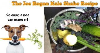 joe-rogan-kale-shake-recipe-smoothie