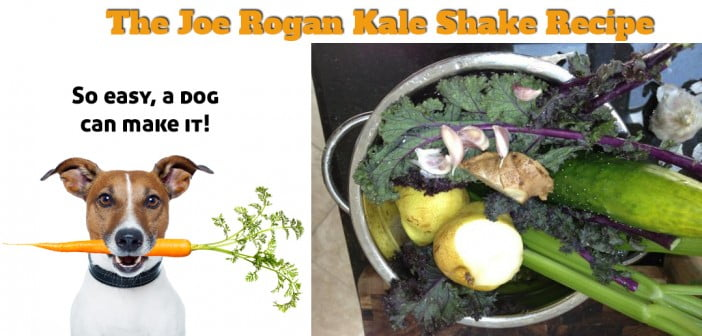 joe-rogan-kale-shake-recipe-smoothie