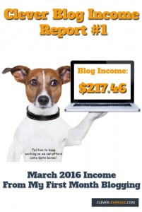 clever-blog-income-report-1-pinterest
