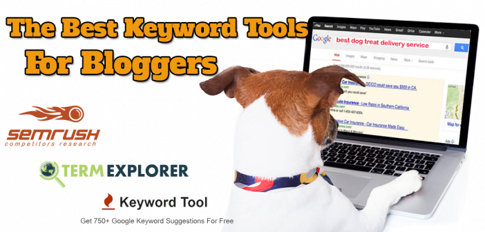 Dog typing on computer searching for popular keyword phrases related to dog delivery services.