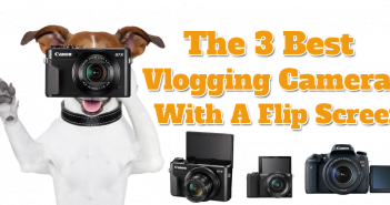 Dog holding the best vlogging camera with a flip screen - the Canon g7X Mark ii.