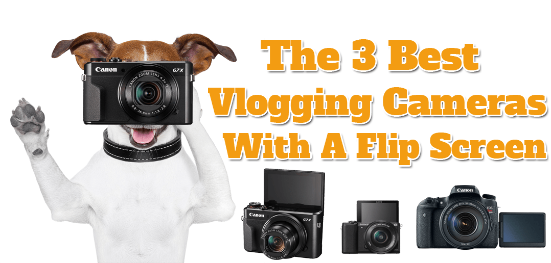 3 Best Vlogging Cameras With A Flip Screen - CleverLeverage com
