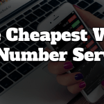 Cheapest 800 Number Service For Startups & Small Businesses