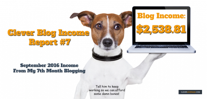 Income From My 7th Month Blogging